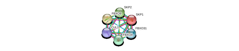 http://string-db.org/version_10/api/image/networkList?limit=0&targetmode=proteins&caller_identity=gene_cards&network_flavor=evidence&identifiers=9606.ENSP00000244426%0d%0a9606.ENSP00000231487%0d%0a9606.ENSP00000326804%0d%0a9606.ENSP00000274255%0d%0a9606.ENSP00000281623%0d%0a9606.ENSP00000310841%0d%0a