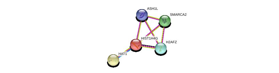 http://string-db.org/version_10/api/image/networkList?limit=0&targetmode=proteins&caller_identity=gene_cards&network_flavor=evidence&identifiers=9606.ENSP00000244537%0d%0a9606.ENSP00000296417%0d%0a9606.ENSP00000376204%0d%0a9606.ENSP00000376204%0d%0a9606.ENSP00000264108%0d%0a9606.ENSP00000265773%0d%0a