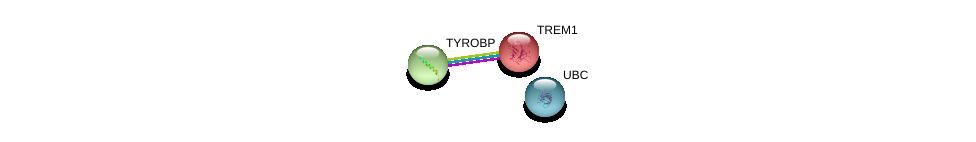 http://string-db.org/version_10/api/image/networkList?limit=0&targetmode=proteins&caller_identity=gene_cards&network_flavor=evidence&identifiers=9606.ENSP00000244709%0d%0a9606.ENSP00000262629%0d%0a9606.ENSP00000344818%0d%0a