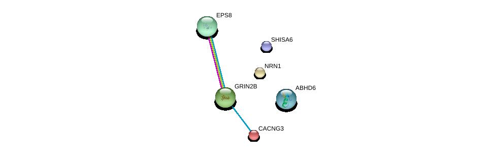 http://string-db.org/version_10/api/image/networkList?limit=0&targetmode=proteins&caller_identity=gene_cards&network_flavor=evidence&identifiers=9606.ENSP00000244766%0d%0a9606.ENSP00000005284%0d%0a9606.ENSP00000390084%0d%0a9606.ENSP00000295962%0d%0a9606.ENSP00000279593%0d%0a9606.ENSP00000281172%0d%0a