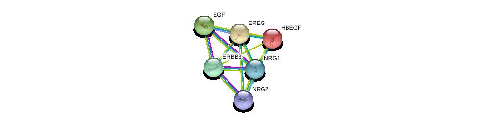 http://string-db.org/version_10/api/image/networkList?limit=0&targetmode=proteins&caller_identity=gene_cards&network_flavor=evidence&identifiers=9606.ENSP00000244869%0d%0a9606.ENSP00000230990%0d%0a9606.ENSP00000265171%0d%0a9606.ENSP00000267101%0d%0a9606.ENSP00000349275%0d%0a9606.ENSP00000354910%0d%0a