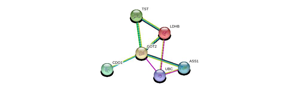 http://string-db.org/version_10/api/image/networkList?limit=0&targetmode=proteins&caller_identity=gene_cards&network_flavor=evidence&identifiers=9606.ENSP00000245206%0d%0a9606.ENSP00000344818%0d%0a9606.ENSP00000229319%0d%0a9606.ENSP00000249042%0d%0a9606.ENSP00000250535%0d%0a9606.ENSP00000253004%0d%0a