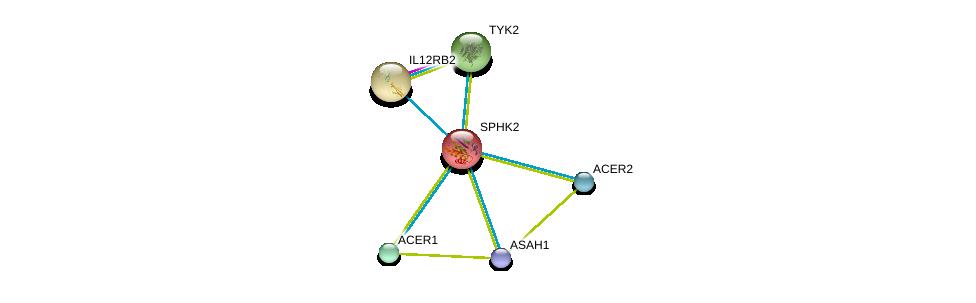 http://string-db.org/version_10/api/image/networkList?limit=0&targetmode=proteins&caller_identity=gene_cards&network_flavor=evidence&identifiers=9606.ENSP00000245222%0d%0a9606.ENSP00000301452%0d%0a9606.ENSP00000342609%0d%0a9606.ENSP00000371152%0d%0a9606.ENSP00000262345%0d%0a9606.ENSP00000264818%0d%0a