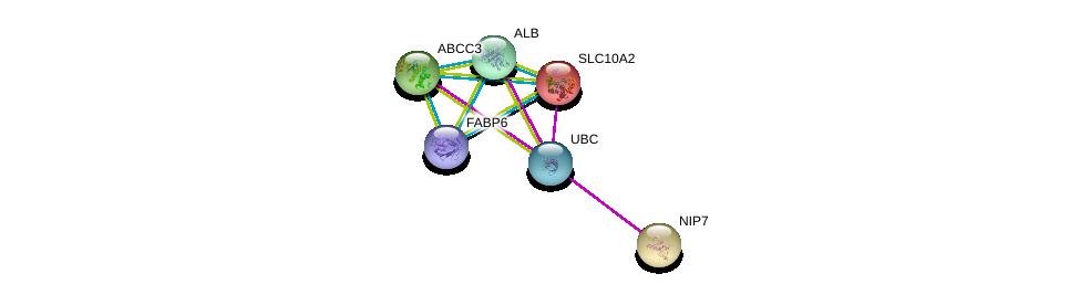 http://string-db.org/version_10/api/image/networkList?limit=0&targetmode=proteins&caller_identity=gene_cards&network_flavor=evidence&identifiers=9606.ENSP00000245312%0d%0a9606.ENSP00000285238%0d%0a9606.ENSP00000295897%0d%0a9606.ENSP00000377549%0d%0a9606.ENSP00000344818%0d%0a9606.ENSP00000254940%0d%0a