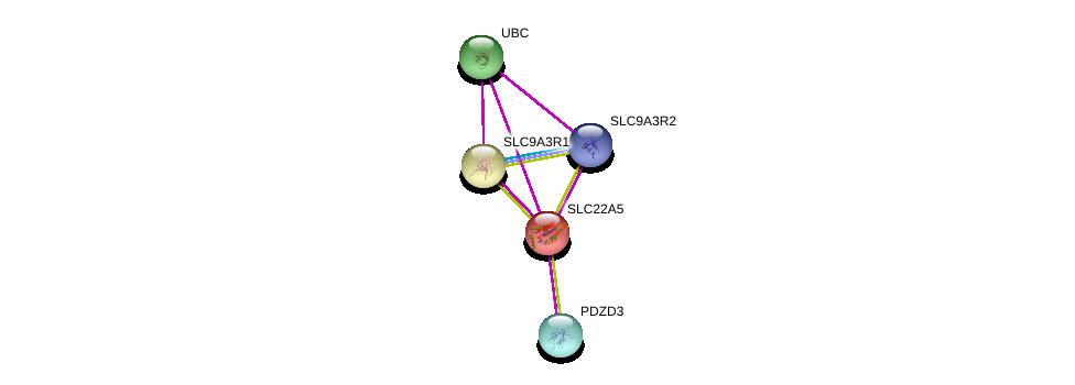 http://string-db.org/version_10/api/image/networkList?limit=0&targetmode=proteins&caller_identity=gene_cards&network_flavor=evidence&identifiers=9606.ENSP00000245407%0d%0a9606.ENSP00000262613%0d%0a9606.ENSP00000262613%0d%0a9606.ENSP00000347742%0d%0a9606.ENSP00000408005%0d%0a9606.ENSP00000344818%0d%0a