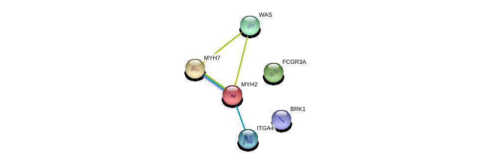 http://string-db.org/version_10/api/image/networkList?limit=0&targetmode=proteins&caller_identity=gene_cards&network_flavor=evidence&identifiers=9606.ENSP00000245503%0d%0a9606.ENSP00000380227%0d%0a9606.ENSP00000356946%0d%0a9606.ENSP00000347507%0d%0a9606.ENSP00000432472%0d%0a9606.ENSP00000365891%0d%0a