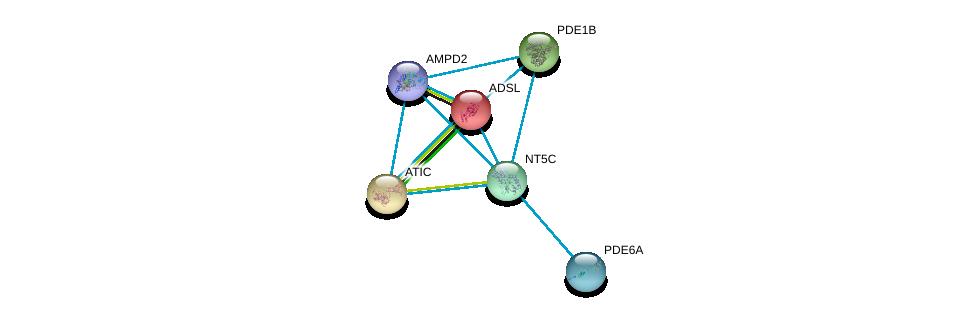 http://string-db.org/version_10/api/image/networkList?limit=0&targetmode=proteins&caller_identity=gene_cards&network_flavor=evidence&identifiers=9606.ENSP00000245552%0d%0a9606.ENSP00000216194%0d%0a9606.ENSP00000236959%0d%0a9606.ENSP00000243052%0d%0a9606.ENSP00000255266%0d%0a9606.ENSP00000256578%0d%0a