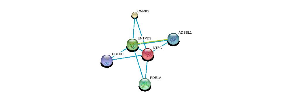 http://string-db.org/version_10/api/image/networkList?limit=0&targetmode=proteins&caller_identity=gene_cards&network_flavor=evidence&identifiers=9606.ENSP00000245552%0d%0a9606.ENSP00000256722%0d%0a9606.ENSP00000301825%0d%0a9606.ENSP00000331574%0d%0a9606.ENSP00000360502%0d%0a9606.ENSP00000333019%0d%0a