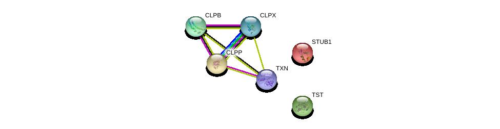http://string-db.org/version_10/api/image/networkList?limit=0&targetmode=proteins&caller_identity=gene_cards&network_flavor=evidence&identifiers=9606.ENSP00000245816%0d%0a9606.ENSP00000294053%0d%0a9606.ENSP00000300107%0d%0a9606.ENSP00000219548%0d%0a9606.ENSP00000249042%0d%0a9606.ENSP00000363641%0d%0a
