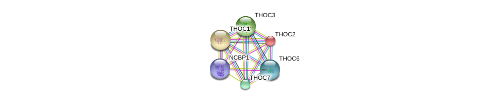 http://string-db.org/version_10/api/image/networkList?limit=0&targetmode=proteins&caller_identity=gene_cards&network_flavor=evidence&identifiers=9606.ENSP00000245838%0d%0a9606.ENSP00000261600%0d%0a9606.ENSP00000265097%0d%0a9606.ENSP00000295899%0d%0a9606.ENSP00000326531%0d%0a9606.ENSP00000364289%0d%0a
