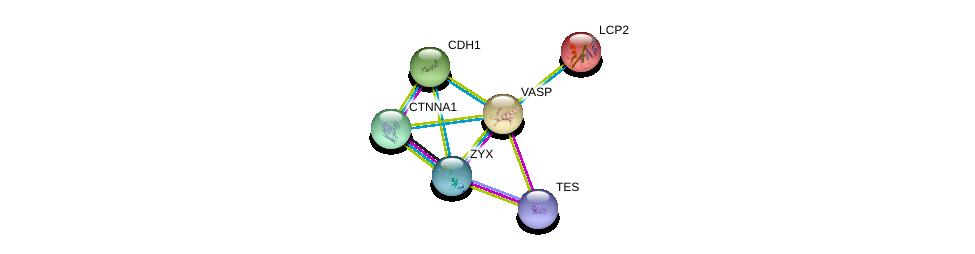 http://string-db.org/version_10/api/image/networkList?limit=0&targetmode=proteins&caller_identity=gene_cards&network_flavor=evidence&identifiers=9606.ENSP00000245932%0d%0a9606.ENSP00000324422%0d%0a9606.ENSP00000350937%0d%0a9606.ENSP00000046794%0d%0a9606.ENSP00000261769%0d%0a9606.ENSP00000304669%0d%0a