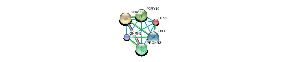 http://string-db.org/version_10/api/image/networkList?limit=0&targetmode=proteins&caller_identity=gene_cards&network_flavor=evidence&identifiers=9606.ENSP00000245983%0d%0a9606.ENSP00000054668%0d%0a9606.ENSP00000078429%0d%0a9606.ENSP00000171757%0d%0a9606.ENSP00000217270%0d%0a9606.ENSP00000217386%0d%0a