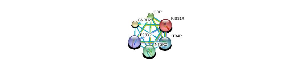 http://string-db.org/version_10/api/image/networkList?limit=0&targetmode=proteins&caller_identity=gene_cards&network_flavor=evidence&identifiers=9606.ENSP00000245983%0d%0a9606.ENSP00000256857%0d%0a9606.ENSP00000303686%0d%0a9606.ENSP00000307445%0d%0a9606.ENSP00000234371%0d%0a9606.ENSP00000310305%0d%0a