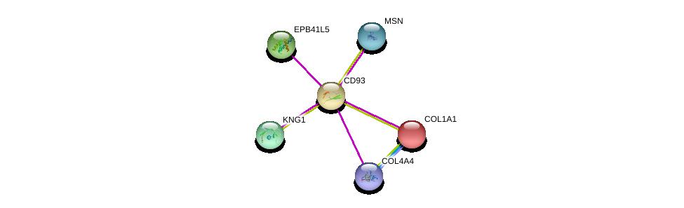 http://string-db.org/version_10/api/image/networkList?limit=0&targetmode=proteins&caller_identity=gene_cards&network_flavor=evidence&identifiers=9606.ENSP00000246006%0d%0a9606.ENSP00000265023%0d%0a9606.ENSP00000263713%0d%0a9606.ENSP00000353408%0d%0a9606.ENSP00000379866%0d%0a9606.ENSP00000225964%0d%0a