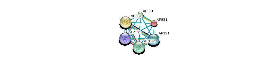 http://string-db.org/version_10/api/image/networkList?limit=0&targetmode=proteins&caller_identity=gene_cards&network_flavor=evidence&identifiers=9606.ENSP00000246041%0d%0a9606.ENSP00000263270%0d%0a9606.ENSP00000297562%0d%0a9606.ENSP00000312442%0d%0a9606.ENSP00000325369%0d%0a9606.ENSP00000336666%0d%0a