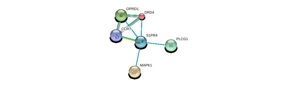 http://string-db.org/version_10/api/image/networkList?limit=0&targetmode=proteins&caller_identity=gene_cards&network_flavor=evidence&identifiers=9606.ENSP00000246115%0d%0a9606.ENSP00000176183%0d%0a9606.ENSP00000215832%0d%0a9606.ENSP00000234961%0d%0a9606.ENSP00000244007%0d%0a9606.ENSP00000246657%0d%0a