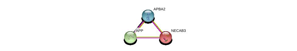 http://string-db.org/version_10/api/image/networkList?limit=0&targetmode=proteins&caller_identity=gene_cards&network_flavor=evidence&identifiers=9606.ENSP00000246190%0d%0a9606.ENSP00000284981%0d%0a9606.ENSP00000453144%0d%0a