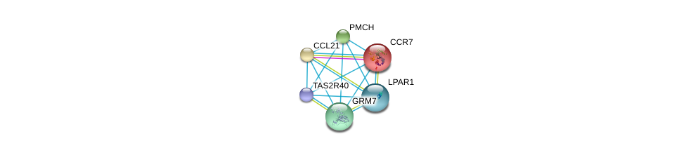 http://string-db.org/version_10/api/image/networkList?limit=0&targetmode=proteins&caller_identity=gene_cards&network_flavor=evidence&identifiers=9606.ENSP00000246657%0d%0a9606.ENSP00000259607%0d%0a9606.ENSP00000386210%0d%0a9606.ENSP00000351755%0d%0a9606.ENSP00000332225%0d%0a9606.ENSP00000350348%0d%0a