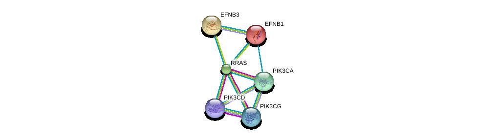 http://string-db.org/version_10/api/image/networkList?limit=0&targetmode=proteins&caller_identity=gene_cards&network_flavor=evidence&identifiers=9606.ENSP00000246792%0d%0a9606.ENSP00000263967%0d%0a9606.ENSP00000352121%0d%0a9606.ENSP00000366563%0d%0a9606.ENSP00000226091%0d%0a9606.ENSP00000204961%0d%0a