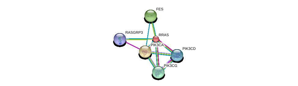 http://string-db.org/version_10/api/image/networkList?limit=0&targetmode=proteins&caller_identity=gene_cards&network_flavor=evidence&identifiers=9606.ENSP00000246792%0d%0a9606.ENSP00000352121%0d%0a9606.ENSP00000263967%0d%0a9606.ENSP00000366563%0d%0a9606.ENSP00000331504%0d%0a9606.ENSP00000384192%0d%0a