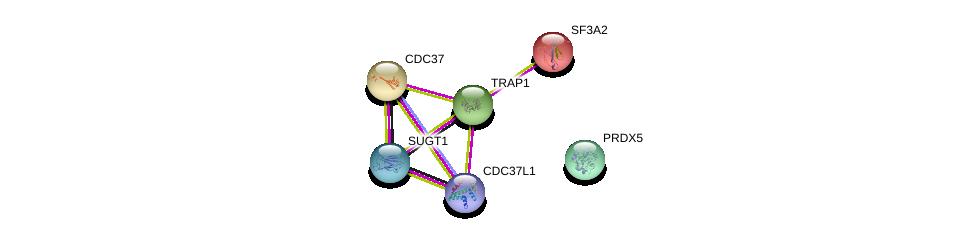 http://string-db.org/version_10/api/image/networkList?limit=0&targetmode=proteins&caller_identity=gene_cards&network_flavor=evidence&identifiers=9606.ENSP00000246957%0d%0a9606.ENSP00000367208%0d%0a9606.ENSP00000222005%0d%0a9606.ENSP00000371278%0d%0a9606.ENSP00000265462%0d%0a9606.ENSP00000221494%0d%0a