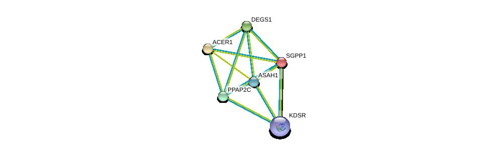 http://string-db.org/version_10/api/image/networkList?limit=0&targetmode=proteins&caller_identity=gene_cards&network_flavor=evidence&identifiers=9606.ENSP00000247225%0d%0a9606.ENSP00000316476%0d%0a9606.ENSP00000385083%0d%0a9606.ENSP00000329697%0d%0a9606.ENSP00000371152%0d%0a9606.ENSP00000301452%0d%0a