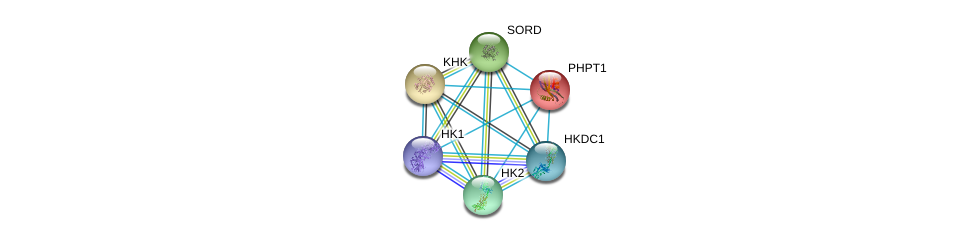 http://string-db.org/version_10/api/image/networkList?limit=0&targetmode=proteins&caller_identity=gene_cards&network_flavor=evidence&identifiers=9606.ENSP00000247665%0d%0a9606.ENSP00000384774%0d%0a9606.ENSP00000260598%0d%0a9606.ENSP00000290573%0d%0a9606.ENSP00000346643%0d%0a9606.ENSP00000267814%0d%0a