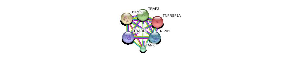 http://string-db.org/version_10/api/image/networkList?limit=0&targetmode=proteins&caller_identity=gene_cards&network_flavor=evidence&identifiers=9606.ENSP00000247668%0d%0a9606.ENSP00000341268%0d%0a9606.ENSP00000162749%0d%0a9606.ENSP00000227758%0d%0a9606.ENSP00000259075%0d%0a9606.ENSP00000259808%0d%0a