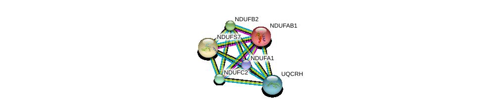 http://string-db.org/version_10/api/image/networkList?limit=0&targetmode=proteins&caller_identity=gene_cards&network_flavor=evidence&identifiers=9606.ENSP00000247866%0d%0a9606.ENSP00000007516%0d%0a9606.ENSP00000360492%0d%0a9606.ENSP00000309565%0d%0a9606.ENSP00000233627%0d%0a9606.ENSP00000281031%0d%0a