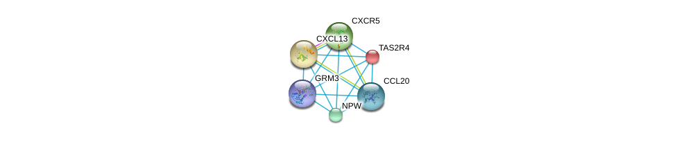 http://string-db.org/version_10/api/image/networkList?limit=0&targetmode=proteins&caller_identity=gene_cards&network_flavor=evidence&identifiers=9606.ENSP00000247881%0d%0a9606.ENSP00000330070%0d%0a9606.ENSP00000286758%0d%0a9606.ENSP00000355316%0d%0a9606.ENSP00000351671%0d%0a9606.ENSP00000292174%0d%0a