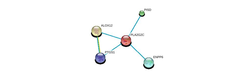 http://string-db.org/version_10/api/image/networkList?limit=0&targetmode=proteins&caller_identity=gene_cards&network_flavor=evidence&identifiers=9606.ENSP00000247992%0d%0a9606.ENSP00000266095%0d%0a9606.ENSP00000266095%0d%0a9606.ENSP00000354612%0d%0a9606.ENSP00000251535%0d%0a9606.ENSP00000296741%0d%0a