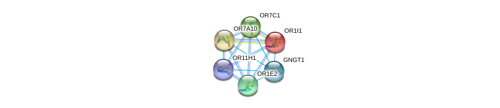 http://string-db.org/version_10/api/image/networkList?limit=0&targetmode=proteins&caller_identity=gene_cards&network_flavor=evidence&identifiers=9606.ENSP00000248073%0d%0a9606.ENSP00000209540%0d%0a9606.ENSP00000248058%0d%0a9606.ENSP00000248384%0d%0a9606.ENSP00000248572%0d%0a9606.ENSP00000252835%0d%0a