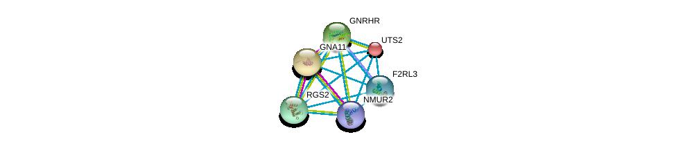 http://string-db.org/version_10/api/image/networkList?limit=0&targetmode=proteins&caller_identity=gene_cards&network_flavor=evidence&identifiers=9606.ENSP00000248076%0d%0a9606.ENSP00000054668%0d%0a9606.ENSP00000078429%0d%0a9606.ENSP00000226413%0d%0a9606.ENSP00000235382%0d%0a9606.ENSP00000255262%0d%0a