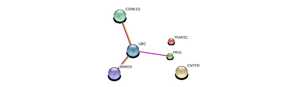 http://string-db.org/version_10/api/image/networkList?limit=0&targetmode=proteins&caller_identity=gene_cards&network_flavor=evidence&identifiers=9606.ENSP00000248098%0d%0a9606.ENSP00000344818%0d%0a9606.ENSP00000457230%0d%0a9606.ENSP00000201031%0d%0a9606.ENSP00000324464%0d%0a9606.ENSP00000242338%0d%0a