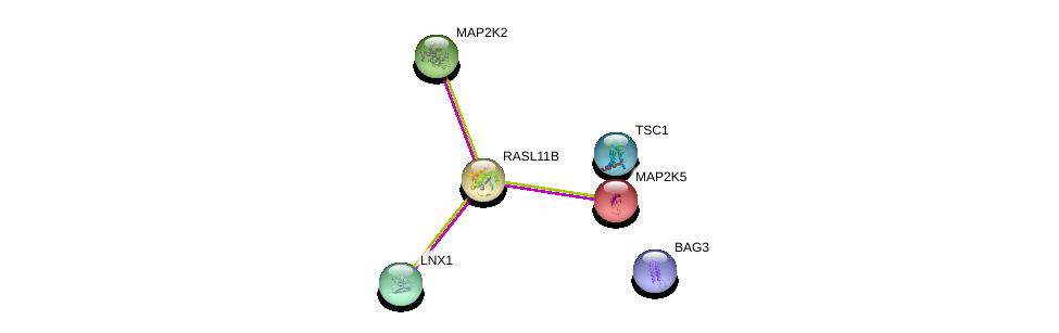 http://string-db.org/version_10/api/image/networkList?limit=0&targetmode=proteins&caller_identity=gene_cards&network_flavor=evidence&identifiers=9606.ENSP00000248706%0d%0a9606.ENSP00000263925%0d%0a9606.ENSP00000298552%0d%0a9606.ENSP00000358081%0d%0a9606.ENSP00000262948%0d%0a9606.ENSP00000178640%0d%0a
