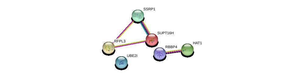 http://string-db.org/version_10/api/image/networkList?limit=0&targetmode=proteins&caller_identity=gene_cards&network_flavor=evidence&identifiers=9606.ENSP00000249007%0d%0a9606.ENSP00000278412%0d%0a9606.ENSP00000216297%0d%0a9606.ENSP00000264108%0d%0a9606.ENSP00000324897%0d%0a9606.ENSP00000362592%0d%0a