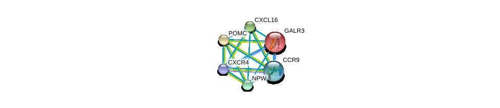 http://string-db.org/version_10/api/image/networkList?limit=0&targetmode=proteins&caller_identity=gene_cards&network_flavor=evidence&identifiers=9606.ENSP00000249041%0d%0a9606.ENSP00000330070%0d%0a9606.ENSP00000386884%0d%0a9606.ENSP00000264708%0d%0a9606.ENSP00000350256%0d%0a9606.ENSP00000293778%0d%0a