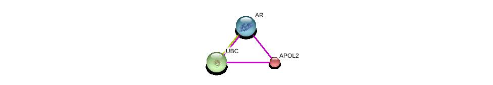 http://string-db.org/version_10/api/image/networkList?limit=0&targetmode=proteins&caller_identity=gene_cards&network_flavor=evidence&identifiers=9606.ENSP00000249066%0d%0a9606.ENSP00000344818%0d%0a9606.ENSP00000363822%0d%0a