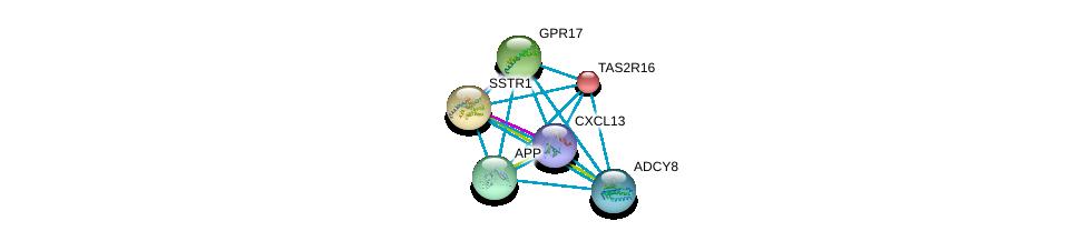 http://string-db.org/version_10/api/image/networkList?limit=0&targetmode=proteins&caller_identity=gene_cards&network_flavor=evidence&identifiers=9606.ENSP00000249284%0d%0a9606.ENSP00000267377%0d%0a9606.ENSP00000272644%0d%0a9606.ENSP00000284981%0d%0a9606.ENSP00000286355%0d%0a9606.ENSP00000286758%0d%0a