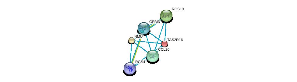http://string-db.org/version_10/api/image/networkList?limit=0&targetmode=proteins&caller_identity=gene_cards&network_flavor=evidence&identifiers=9606.ENSP00000249284%0d%0a9606.ENSP00000355316%0d%0a9606.ENSP00000351671%0d%0a9606.ENSP00000397181%0d%0a9606.ENSP00000333194%0d%0a9606.ENSP00000264218%0d%0a