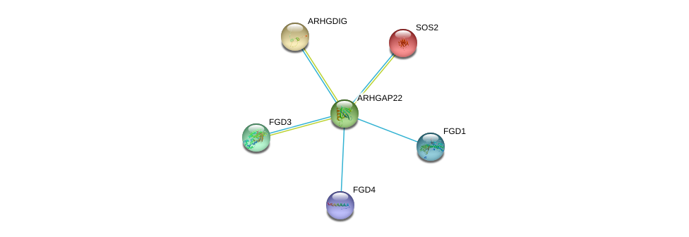 http://string-db.org/version_10/api/image/networkList?limit=0&targetmode=proteins&caller_identity=gene_cards&network_flavor=evidence&identifiers=9606.ENSP00000249601%0d%0a9606.ENSP00000336914%0d%0a9606.ENSP00000364277%0d%0a9606.ENSP00000394487%0d%0a9606.ENSP00000216373%0d%0a9606.ENSP00000219409%0d%0a
