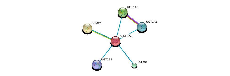 http://string-db.org/version_10/api/image/networkList?limit=0&targetmode=proteins&caller_identity=gene_cards&network_flavor=evidence&identifiers=9606.ENSP00000249750%0d%0a9606.ENSP00000258168%0d%0a9606.ENSP00000303174%0d%0a9606.ENSP00000304811%0d%0a9606.ENSP00000304845%0d%0a9606.ENSP00000305221%0d%0a