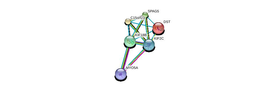http://string-db.org/version_10/api/image/networkList?limit=0&targetmode=proteins&caller_identity=gene_cards&network_flavor=evidence&identifiers=9606.ENSP00000249776%0d%0a9606.ENSP00000361298%0d%0a9606.ENSP00000323300%0d%0a9606.ENSP00000244364%0d%0a9606.ENSP00000341466%0d%0a9606.ENSP00000382177%0d%0a