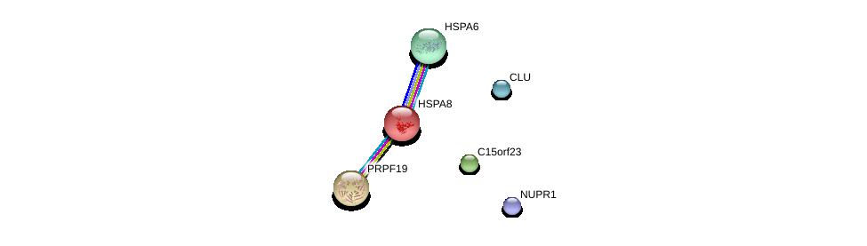 http://string-db.org/version_10/api/image/networkList?limit=0&targetmode=proteins&caller_identity=gene_cards&network_flavor=evidence&identifiers=9606.ENSP00000249776%0d%0a9606.ENSP00000379003%0d%0a9606.ENSP00000310219%0d%0a9606.ENSP00000227378%0d%0a9606.ENSP00000227524%0d%0a9606.ENSP00000315130%0d%0a