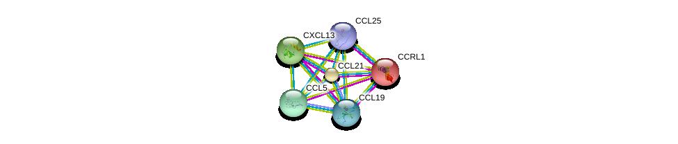 http://string-db.org/version_10/api/image/networkList?limit=0&targetmode=proteins&caller_identity=gene_cards&network_flavor=evidence&identifiers=9606.ENSP00000249887%0d%0a9606.ENSP00000293272%0d%0a9606.ENSP00000259607%0d%0a9606.ENSP00000286758%0d%0a9606.ENSP00000308815%0d%0a9606.ENSP00000375086%0d%0a