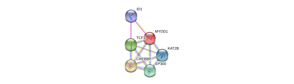 http://string-db.org/version_10/api/image/networkList?limit=0&targetmode=proteins&caller_identity=gene_cards&network_flavor=evidence&identifiers=9606.ENSP00000250003%0d%0a9606.ENSP00000263253%0d%0a9606.ENSP00000365280%0d%0a9606.ENSP00000262965%0d%0a9606.ENSP00000263754%0d%0a9606.ENSP00000262367%0d%0a