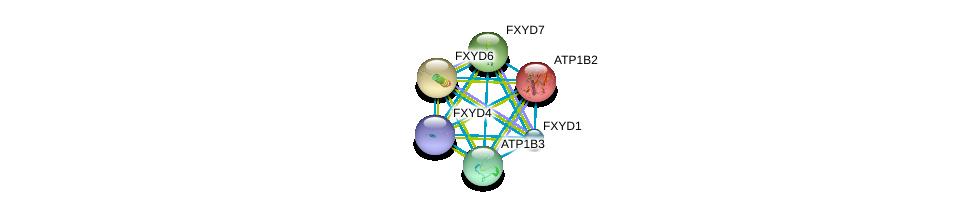 http://string-db.org/version_10/api/image/networkList?limit=0&targetmode=proteins&caller_identity=gene_cards&network_flavor=evidence&identifiers=9606.ENSP00000250111%0d%0a9606.ENSP00000286371%0d%0a9606.ENSP00000270310%0d%0a9606.ENSP00000343314%0d%0a9606.ENSP00000363575%0d%0a9606.ENSP00000260282%0d%0a