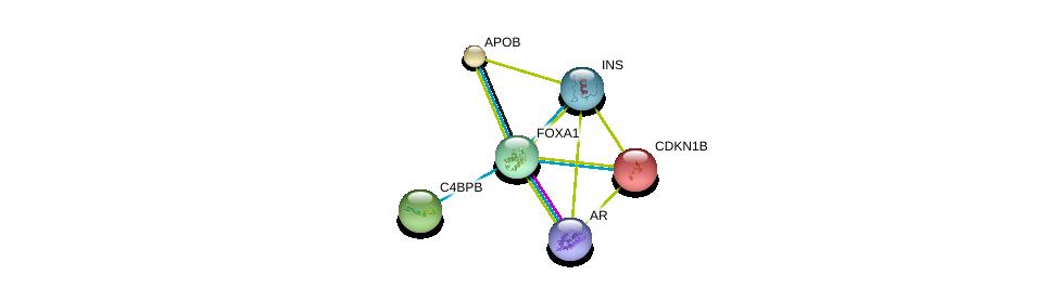 http://string-db.org/version_10/api/image/networkList?limit=0&targetmode=proteins&caller_identity=gene_cards&network_flavor=evidence&identifiers=9606.ENSP00000250448%0d%0a9606.ENSP00000363822%0d%0a9606.ENSP00000233242%0d%0a9606.ENSP00000228872%0d%0a9606.ENSP00000243611%0d%0a9606.ENSP00000250971%0d%0a