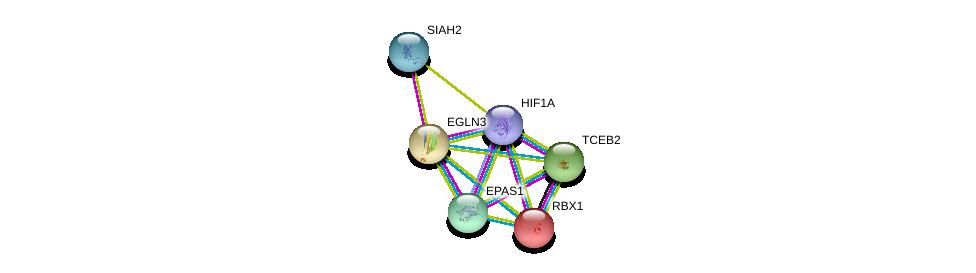 http://string-db.org/version_10/api/image/networkList?limit=0&targetmode=proteins&caller_identity=gene_cards&network_flavor=evidence&identifiers=9606.ENSP00000250457%0d%0a9606.ENSP00000338018%0d%0a9606.ENSP00000263734%0d%0a9606.ENSP00000322457%0d%0a9606.ENSP00000216225%0d%0a9606.ENSP00000262306%0d%0a