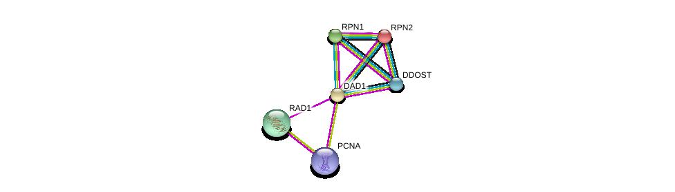 http://string-db.org/version_10/api/image/networkList?limit=0&targetmode=proteins&caller_identity=gene_cards&network_flavor=evidence&identifiers=9606.ENSP00000250498%0d%0a9606.ENSP00000368438%0d%0a9606.ENSP00000340879%0d%0a9606.ENSP00000364188%0d%0a9606.ENSP00000296255%0d%0a9606.ENSP00000237530%0d%0a